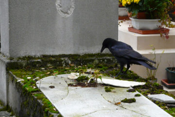 Facts about the Père Lachaise Cemetery in Paris
